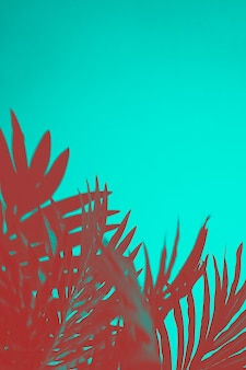 Red palm leaves on turquoise backdrop