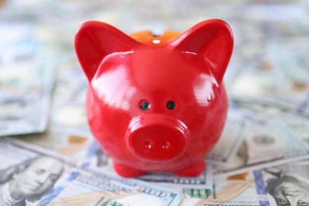 赤豚の貯金箱は現金紙幣の上に立っています。預金と預金の概念