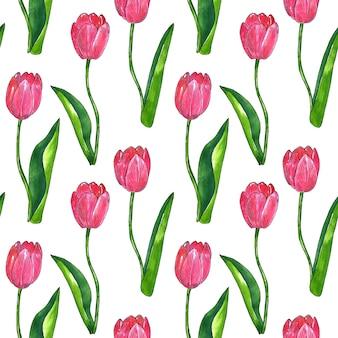 葉と赤ピンクのチューリップ。シームレスパターン。印刷、ファブリック、テキスタイル、壁紙のテクスチャ。白の手描きの水彩画とインクのイラスト