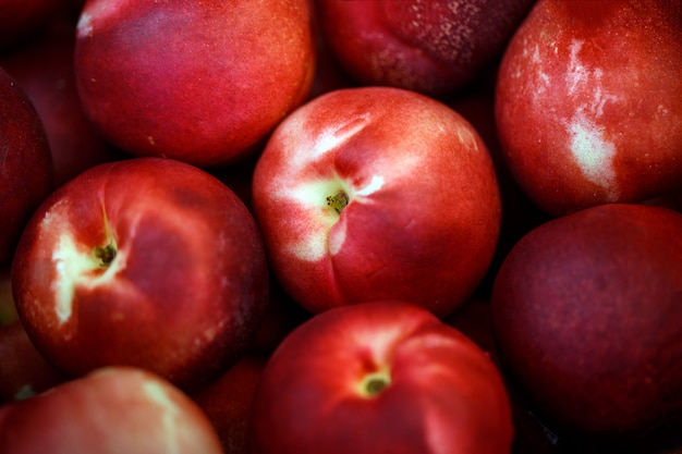 Red plums fruit