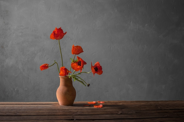 Red poppy in jug on dark background