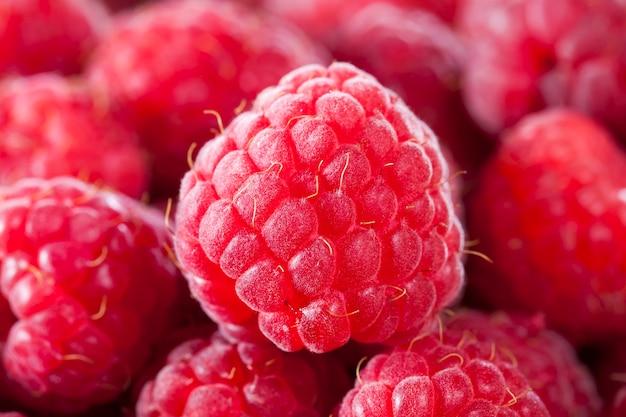 Red raspberry harvest, ready for eating