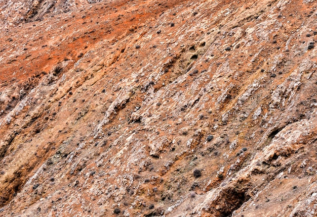 茂みの多い赤い岩の表面-クールな背景に最適