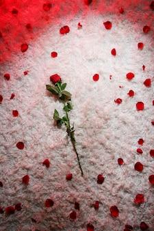 赤いバラと花びらのカーペット