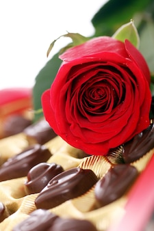 Red rose and chocolate candies