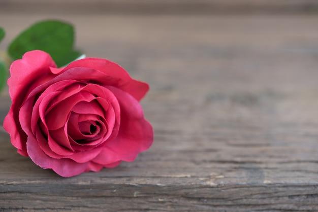 Красная роза крупным планом