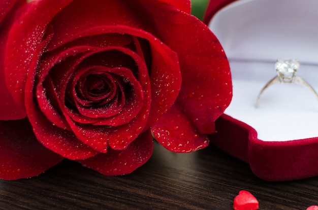 Red rose and engagement ring