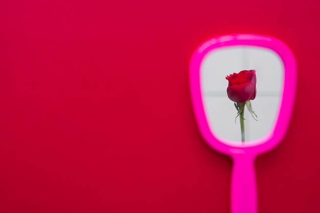 Red rose flower in mirror reflection on table