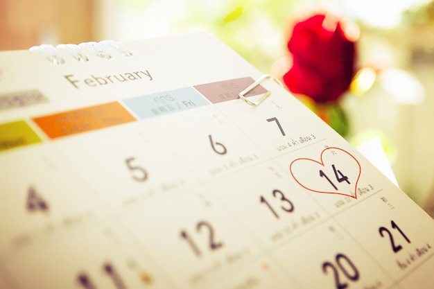 Red rose flower with calendar