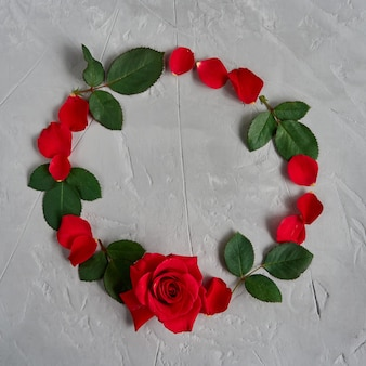 Красные розы цветы, лепестки, листья круг кадр, изолированные на сером текстурированном фоне плоская планировка, вид сверху