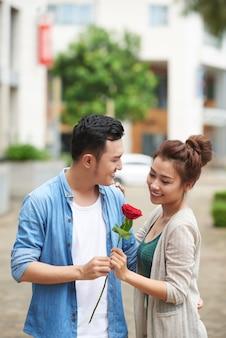 ロマンチックなデートの赤いバラ