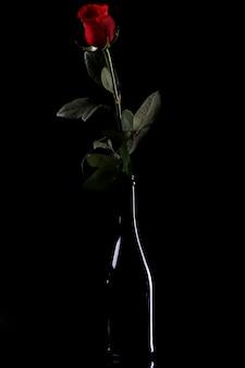 ボトルに赤いバラ