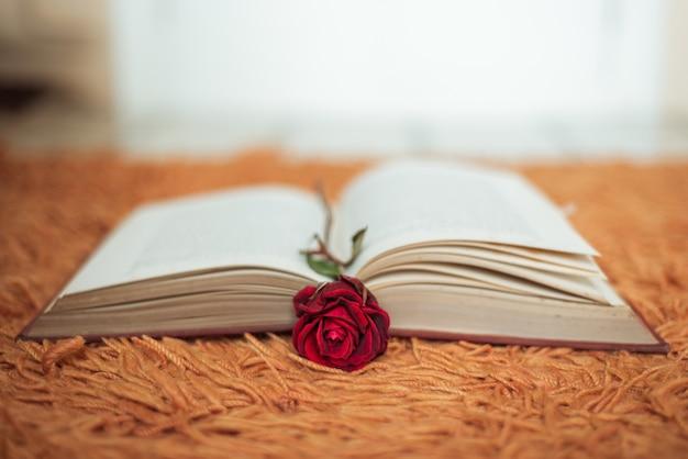 열려있는 책 안에 빨간 장미