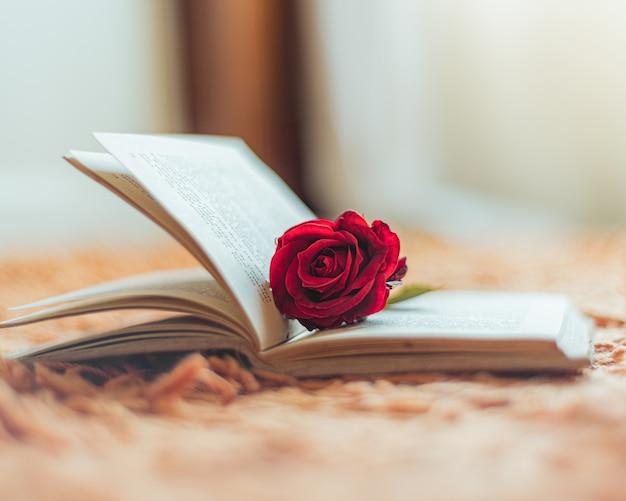 開いた本の中の赤いバラ