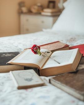 Rosa rossa all'interno di un libro aperto Foto Gratuite