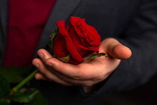 Red rose in a man's hand on a black background. close-up.