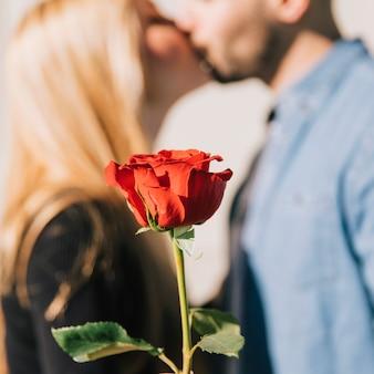 커플 키스의 배경에 빨간 장미
