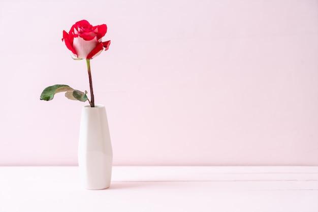 나무에 빨간 장미