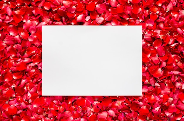 赤いバラの花びらの花の背景にテキスト用の空白の空白があります。バレンタインデーと愛のコンセプト。