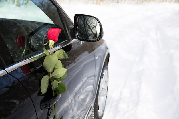Red rose in thw door of the car