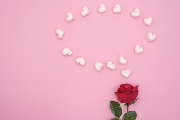 Red rose with  bubble speech hearts on pink paper background
