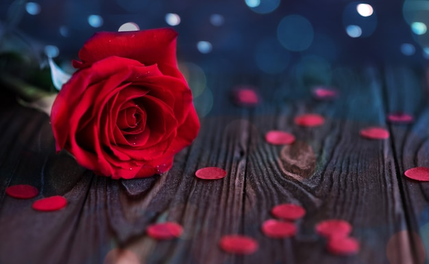 Red rose with dew drops on a wooden background with bokeh, close-up