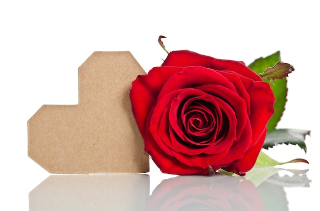 Red rose with empty tag on white background