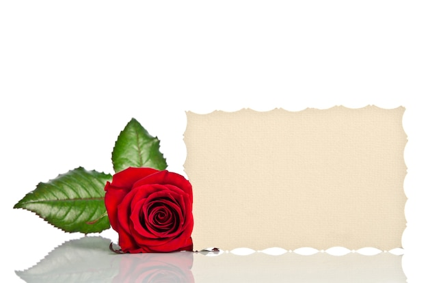 Red rose with empty tag