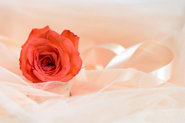 ファブリックとリボンで赤いバラ