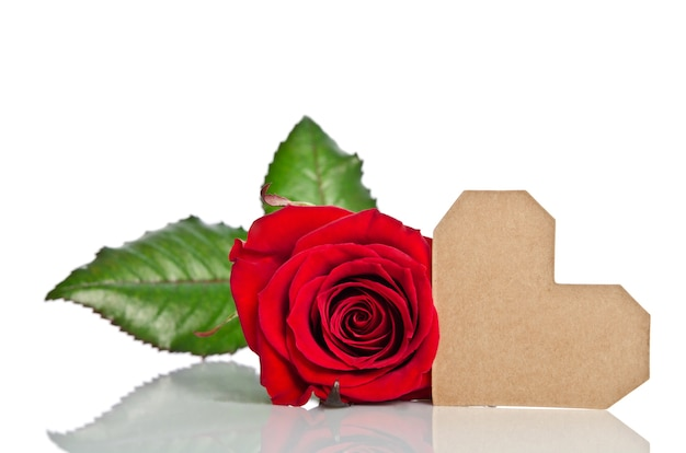 Red rose with valentine for text