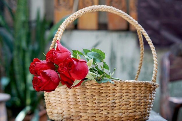 Red roses in the basket in the garden