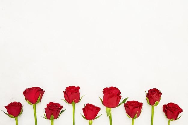 Граница красных роз.
