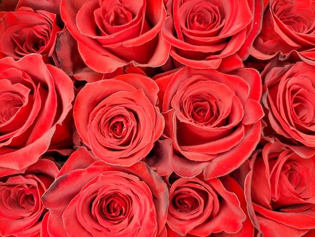 赤いバラがクローズアップ。店頭でバラを売る。休日の花束。誕生日、母の日、バレンタインデー、母の日。