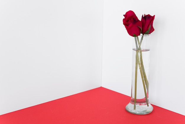 Red roses in glass vase on table