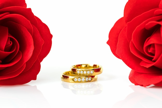 Red roses and gold rings on white