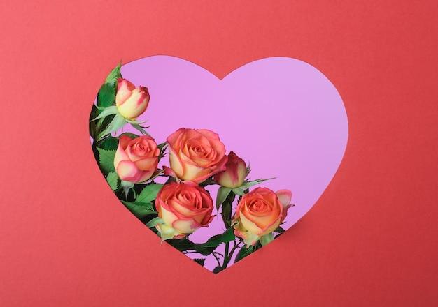 Красные розы в красной рамке в форме сердца на розовой поверхности
