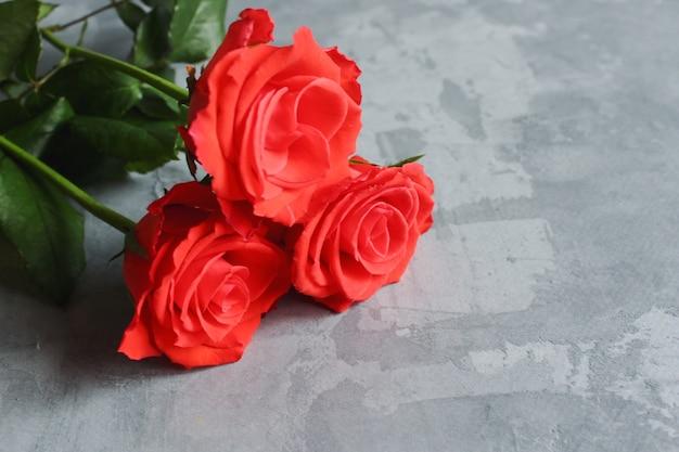 Красные розы на серой бетонной поверхности