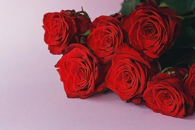 コピースペースとピンクの背景に赤いバラ