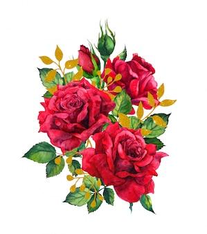 黄金の葉と赤いバラ。水彩画イラスト