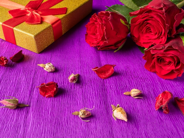 Red roses next to yellow gift and rosebuds on purple