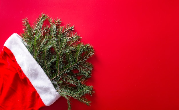 Красная шапка санта-клауса с ветками елки
