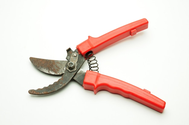 Red scissors for pruning tree branches and bushes on isolated white background