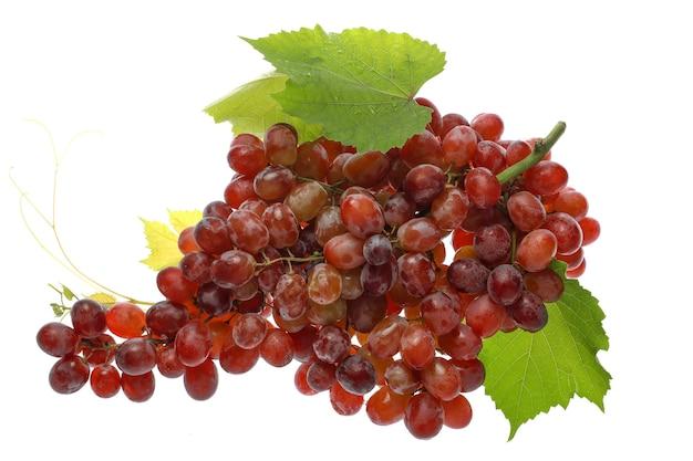 Красный виноград без косточек с виноградными листьями и каплями воды.