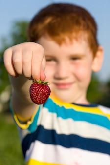 손에 빨간 딸기