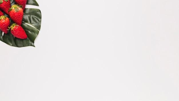 Красная клубника на зеленом листе в углу белой поверхности Бесплатные Фотографии