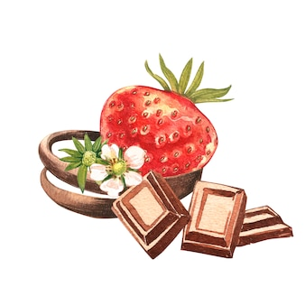 Red strawberry with pieces of chocolate. hand drawn watercolor painting illustration.
