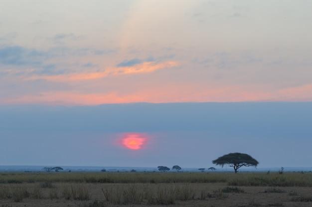 Красный закат в африке амбосели кения