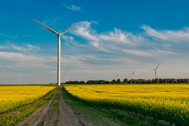 A red suv below a wind turbine at the end of a road in a canola field