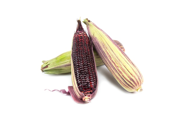 赤いスイートコーンまたはサイアムルビークイーンは、白で隔離された新鮮なものを食べることができます
