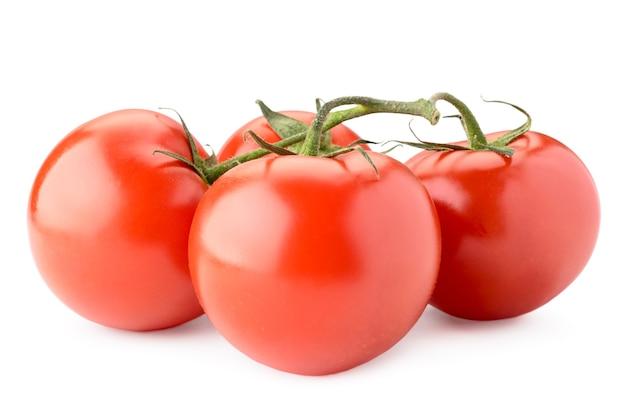 Красные помидоры на ветке